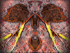 Montage-abstrait-1.jpg
