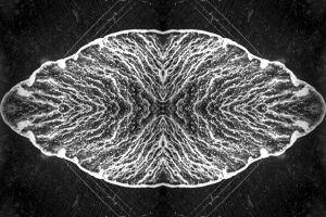 Stainless-steel-4.jpg